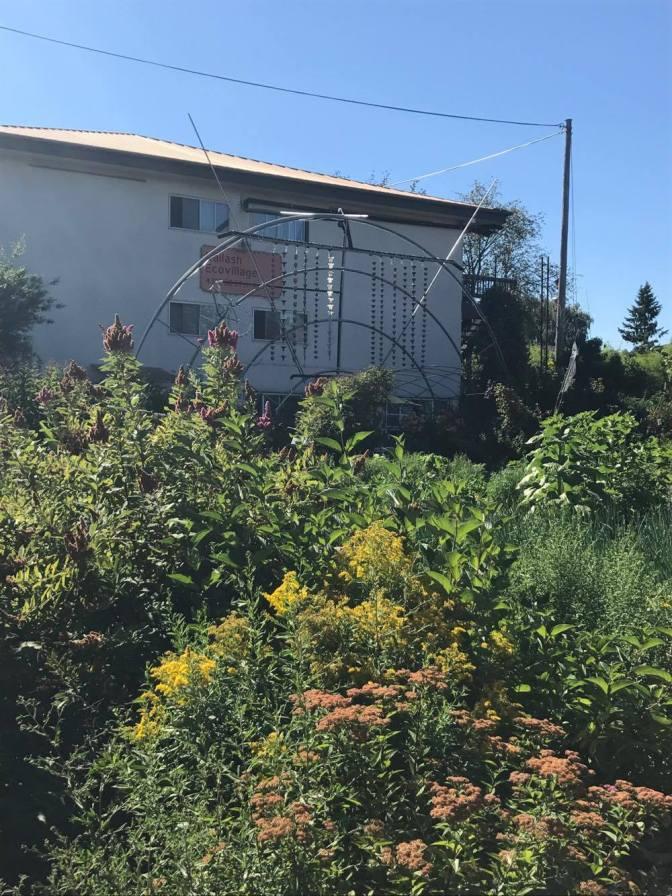 Kailesh Ecovillage